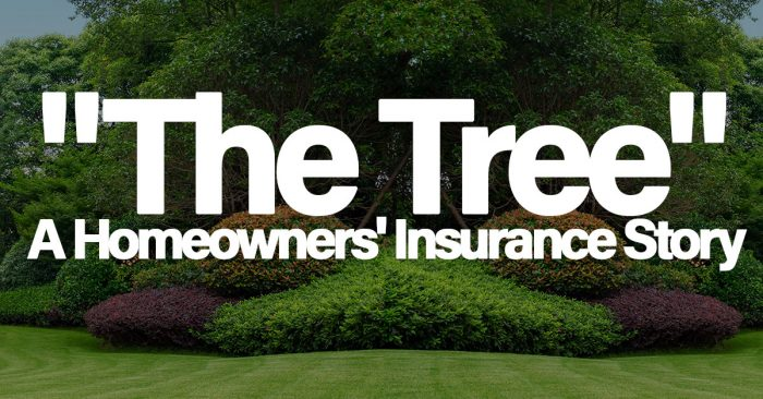 """Homeowners' Insurance and """"The Tree"""" - SaveUmore Insurance ..."""